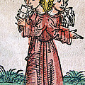 Conjoined Twins, Nuremberg Chronicle by Science Source