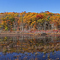 Connecticut Fall Foliage by Juergen Roth