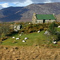 Connemara Cottage Ireland by Pierre Leclerc Photography