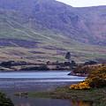 Connemara Leenane Ireland by Teresa Mucha