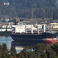 Container Ship Ready To Load More Lumber by Tom Janca