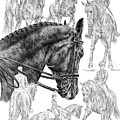 Contemplating Collection - Dressage Horse Drawing by Kelli Swan