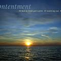 Contentment by Michelle Calkins