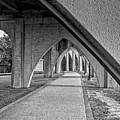 Conway River Walk Black And White by Kathy Baccari
