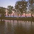 Cooinda Northern Territory Australia by Gary Wonning
