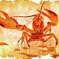 Cooked Lobster On Parchment Paper by Ken Figurski