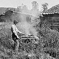 Cooking Over A Campfire by Underwood Archives