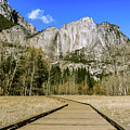 Cook's Meadow Boardwalk Yosemite by Adam Rainoff