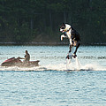 Cool Dog On A Water Jet Pack by Les Palenik