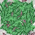 Cool Tropic  by Mark Ashkenazi