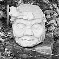 Copan Ruins Artifacts IIi by Trude Janssen