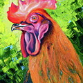 Copper Maran French Rooster by Susan A Becker