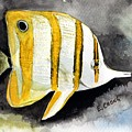 Copperband Butterflyfish  by Esther Chong