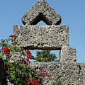 Coral Castle For Love by Shirley Heyn