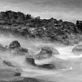 Coral Cove Park 0558 by Bob Neiman