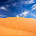 Coral Pink Sand Dunes State Park, Kanab, Utah by Bryan Mullennix