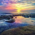 Coral Pools by Debra and Dave Vanderlaan