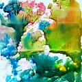 Corals by Petra Olsakova