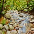 Coranderrk Creek Yarra Ranges by Dai Wynn