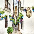 Cordoba Flower Street Wide by Weston Westmoreland
