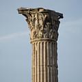 Corinthian Columns At The Roman Forum by Joel Sartore