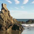 Cormorants At El Madador Beach by Art Block Collections