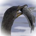 Cormorant's Whopper Dive Catch by Leslie Reagan -  Joy To The Wild Photos