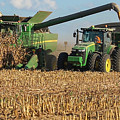 Corn Harvest by Jeff Sebaugh