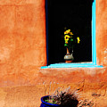 Corner In Santa Fe Nm by Susanne Van Hulst