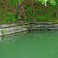 Corner Of The Lake by Diane Friend
