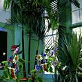 Corner Office, Key West, Fl by Thomas Pollart