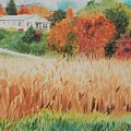 Cornfield In Autumn by Judy Swerlick