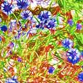 Cornfield With Cornflowers by Jeelan Clark