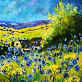 Cornflowers In Ver by Pol Ledent