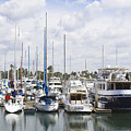 Coronado Boats II by Margie Wildblood
