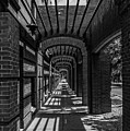 Corridor Of Brick And Stone by Ray Sheley