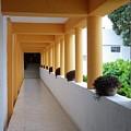 Corridor by Victor K
