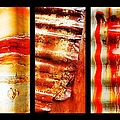 Corrugated Iron Triptych #4 by Lexa Harpell