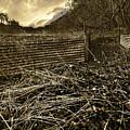 Corrugated Tin Pen by Meirion Matthias
