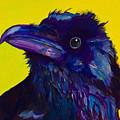 Corvus by Pat Saunders-White