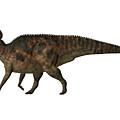 Corythosaurus On White by Corey Ford