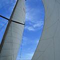 Cosmic Sails by John Harmon