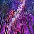 Cosmos by Deboshree Chatterjee