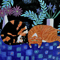 Cosy Companions by Mary Stubberfield