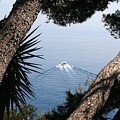 Cote D Azur by Christiane Schulze Art And Photography