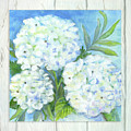 Cottage At The Shore 5 White Washed Wood W Hydrangeas And Eucalyptus Leaves by Audrey Jeanne Roberts