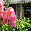 Cottage Garden.  by Trudee Hunter