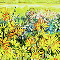 Cottage Gate Seen Through Sun Daisies by Joan Thewsey