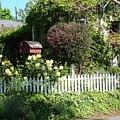 Cottage Picket Fence by John Loyd Rushing