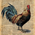 Cottage Rooster Illustration Vintage Dictionary Book Page by Anna W